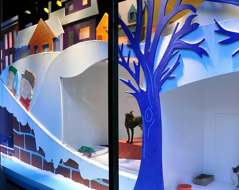 个性时尚的创意橱窗设计 _合抱木家装效果图图片